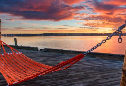 Sway on the Halifax Waterfront Hammocks | Discover Halifax