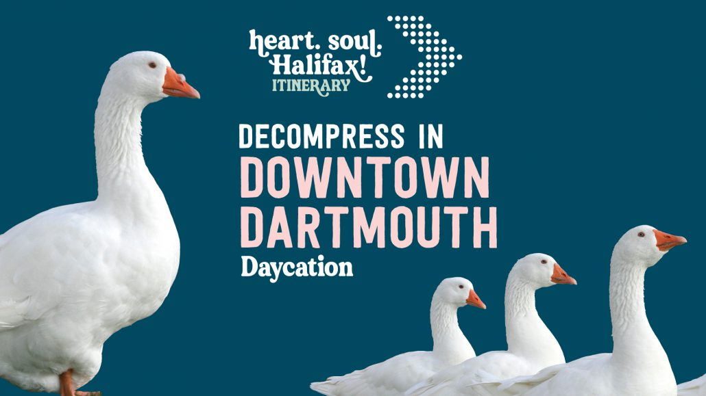 Decompress in Dartmouth Daycation